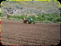 AreaActuacionAgricultura1