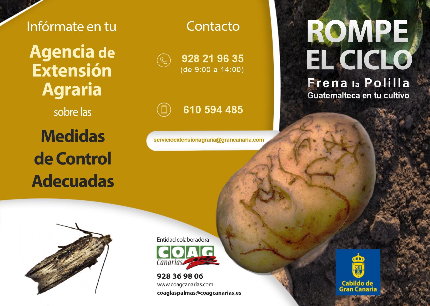 Folleto-Control-de-la-Tecia_page-0001